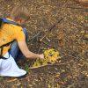 Land Art Eco Rangers