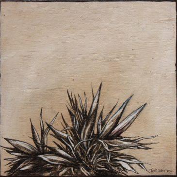 Veld Plantium