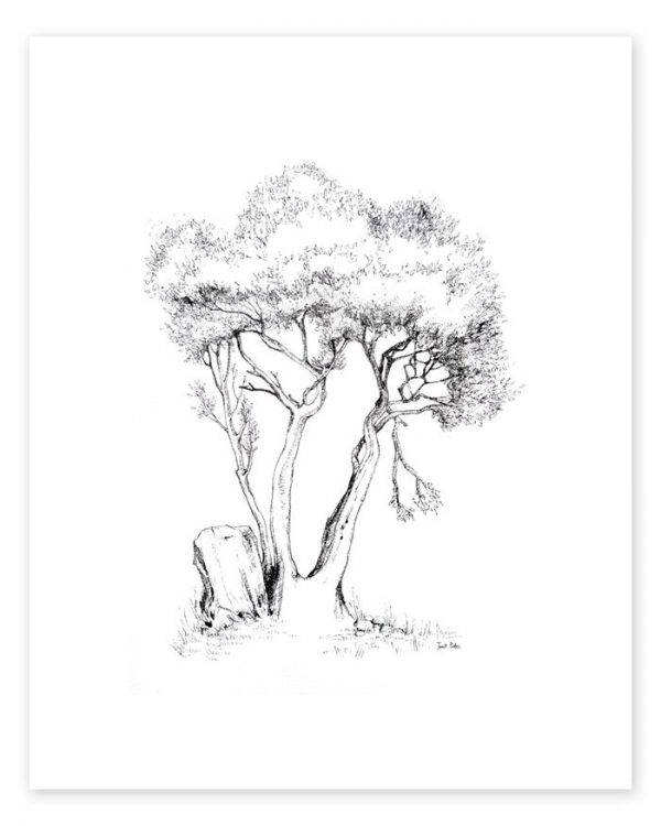 A drawing of a tree with one broken branch on white background